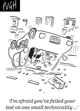 Daily Mail cartoon car on roof