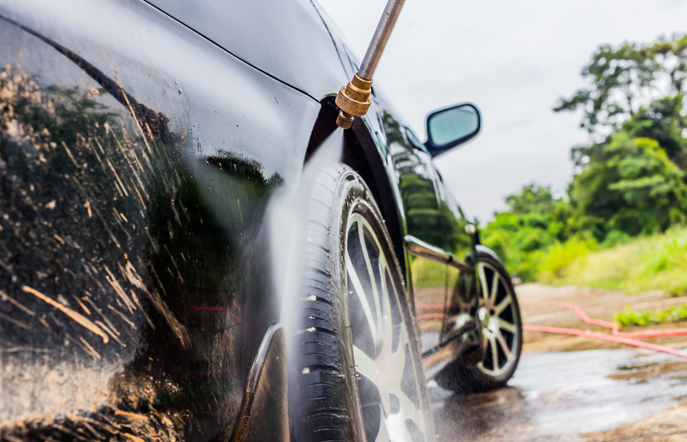 How to Clean Insects Off a Cars Exterior How to Clean Insects Off a Cars Exterior new pictures